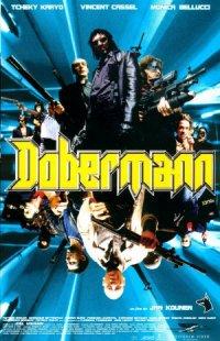 Dobermann poster