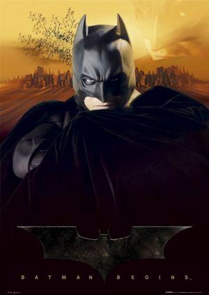 Batman Begins 480x676