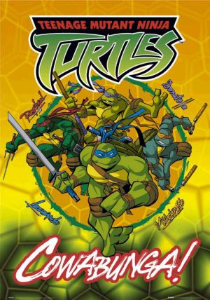 Teenage Mutant Ninja Turtles 480x684