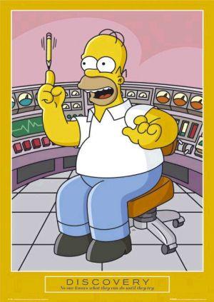 Die Simpsons 480x676
