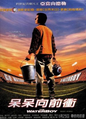 The Waterboy 489x675