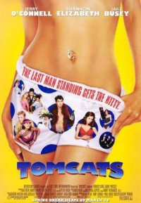 Tomcats poster