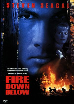 Fire Down Below 1558x2173