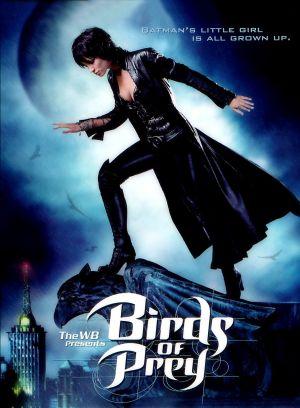 Birds of Prey 1017x1384