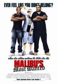 Malibu's Most Wanted - Rapimento a Malibu poster