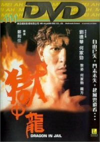 Yu zhong long poster