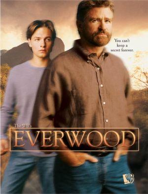 Everwood 466x611