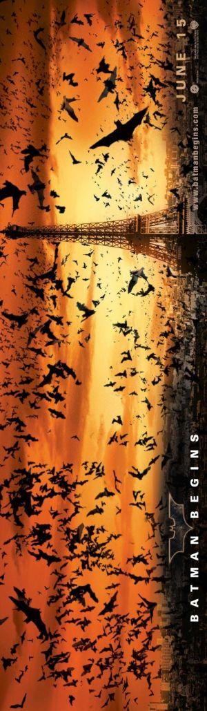 Batman Begins 504x1728