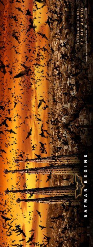Batman Begins 529x1394