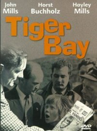 Mystery at Tiger Bay poster