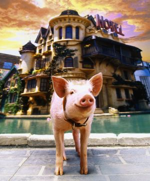 Babe: Pig in the City 2228x2685