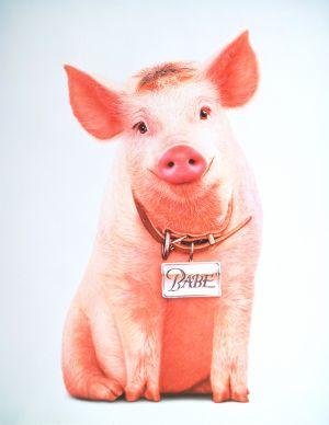 Schweinchen Babe in der großen Stadt 1734x2244