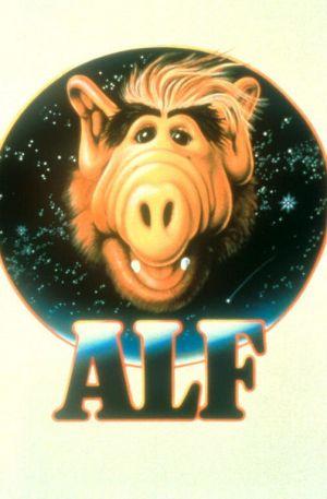 ALF 504x768