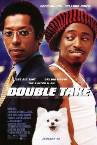 Double Take poster