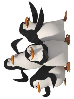 Madagascar 960x1280