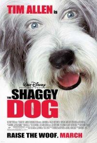 Shaggy Dog - Papà che abbaia... non morde poster
