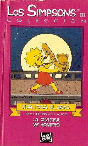 Die Simpsons 912x1504