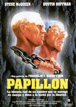 Papillon 1024x1441