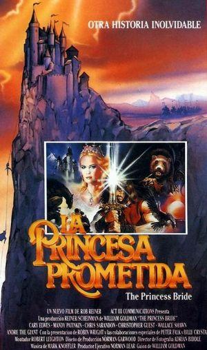 Bortrövad prinsessa 413x700