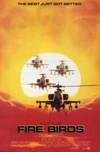 Fire Birds poster