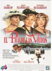 Die Witwen von Widows Peak poster