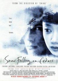 Snow Falling on Cedars poster