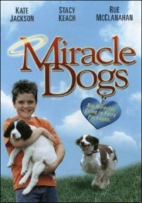 Miracle Dogs poster