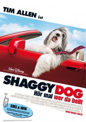 The Shaggy Dog 2121x3000