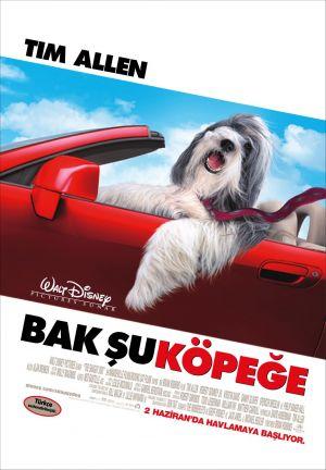 The Shaggy Dog 1071x1544