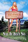 Say It Isn't So poster