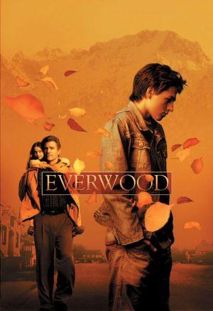 Everwood 500x728