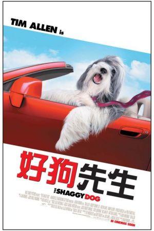 The Shaggy Dog 480x720