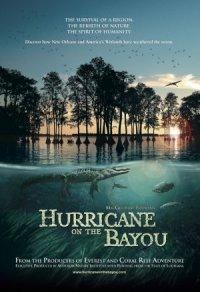 Hurricane on the Bayou poster