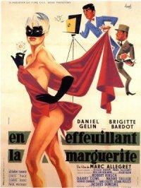 Mademoiselle Striptease poster
