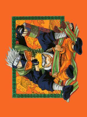 Naruto 900x1200