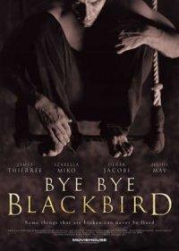 Bye Bye Blackbird poster