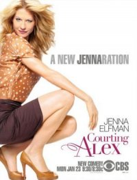 Courting Alex poster