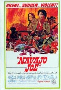 Navajo's Land poster