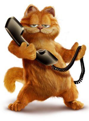 Garfield 1107x1500