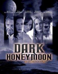 Dark Honeymoon poster