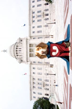 Underdog - Storia di un vero supereroe 2598x3909