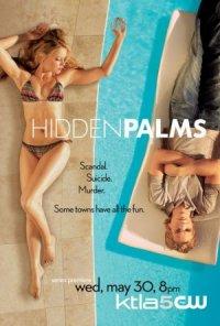 Hidden Palms poster