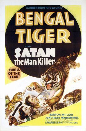 Bengal Tiger 672x1021