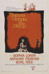 Desire Under the Elms poster