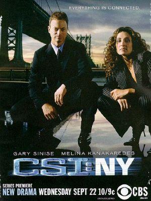 CSI: NY 374x496