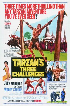 Tarzan's Three Challenges 1337x2000
