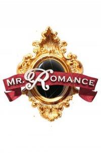 Mr. Romance poster