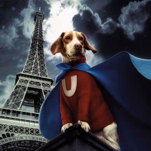 Underdog - Storia di un vero supereroe 2996x3000