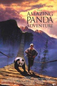 The Amazing Panda Adventure poster