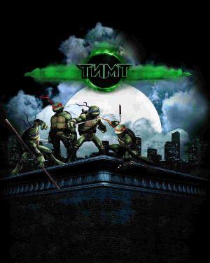 Teenage Mutant Ninja Turtles 1524x1911